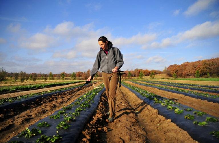 Νέοι αγρότες – Αρχές Οκτώβρη το νέο πρόγραμμα ύψους 450 εκατ. ευρώ
