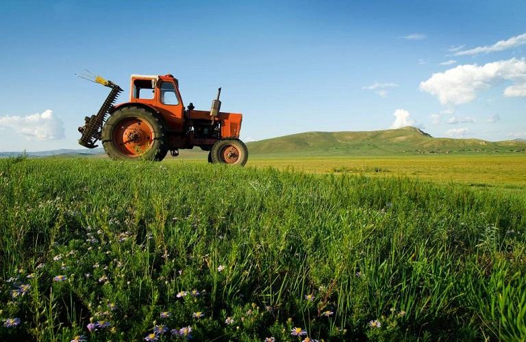 Σχέδια βελτίωσης και Νέοι αγρότες – Τι προβλέπεται για τους υποψηφίους των πυρόπληκτων περιοχών