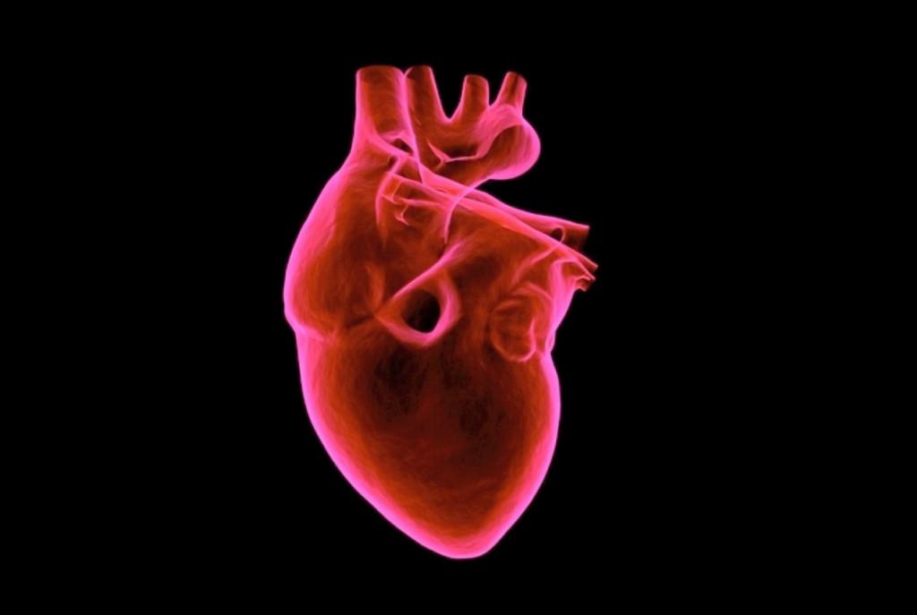 Στην «καρδιά» των γενετικών καρδιαγγειακών νοσημάτων